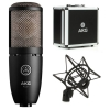 Купить AKG PERCEPTION P220
